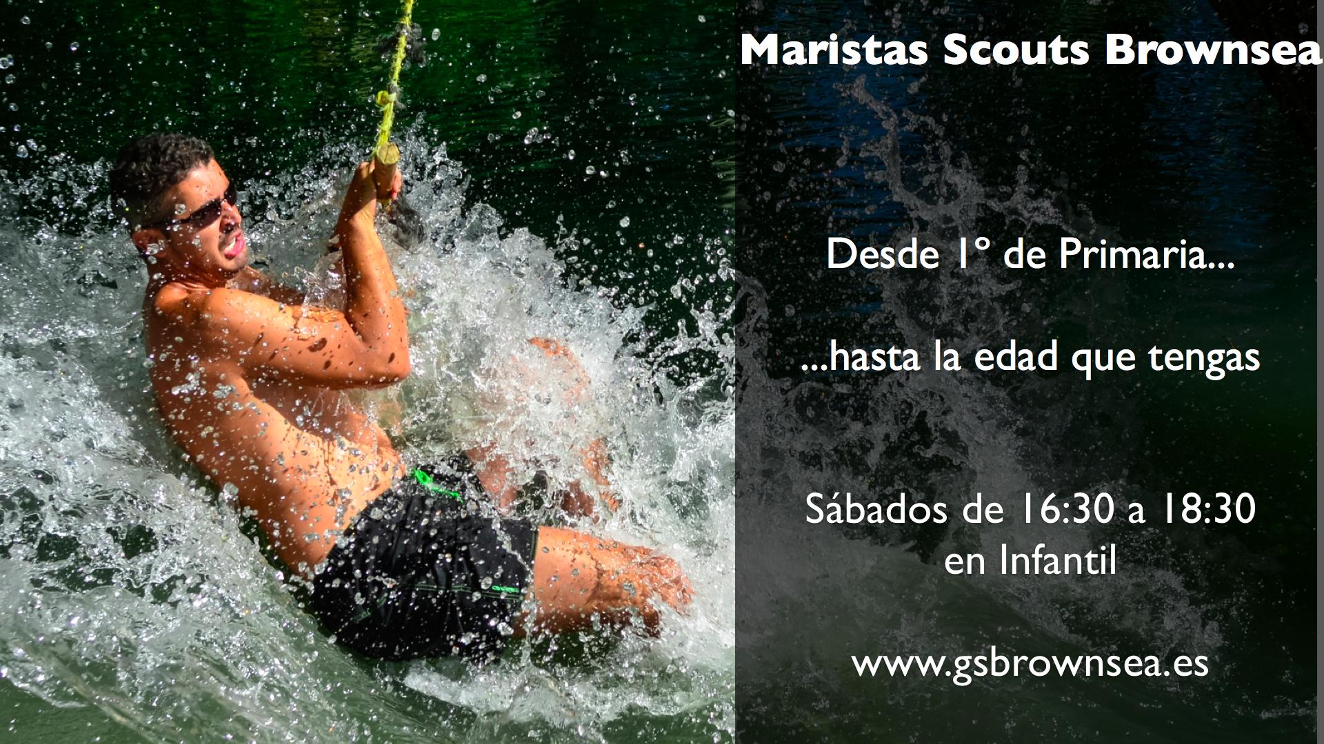 cartelScouts3wb