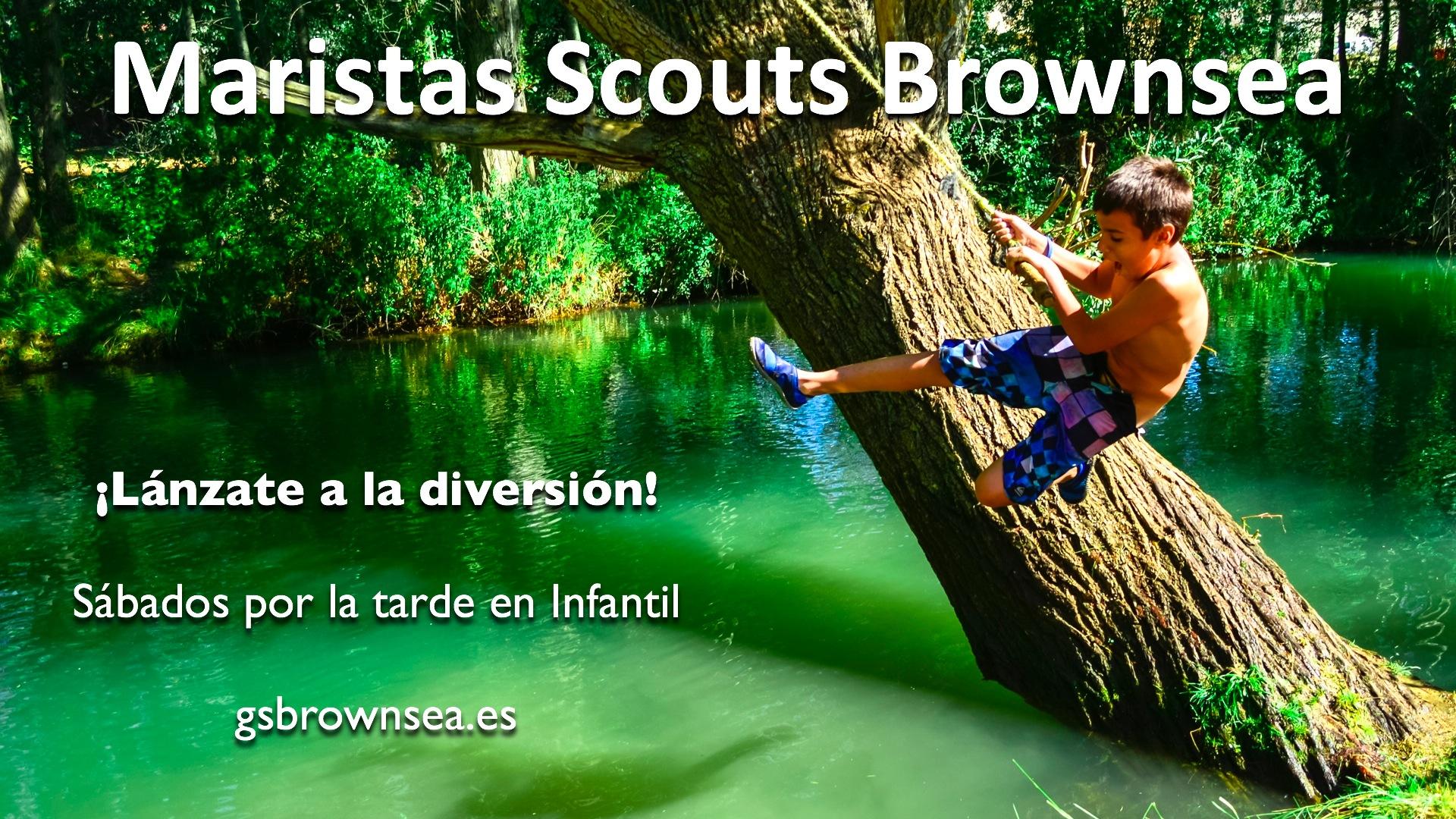 cartelScouts4wb