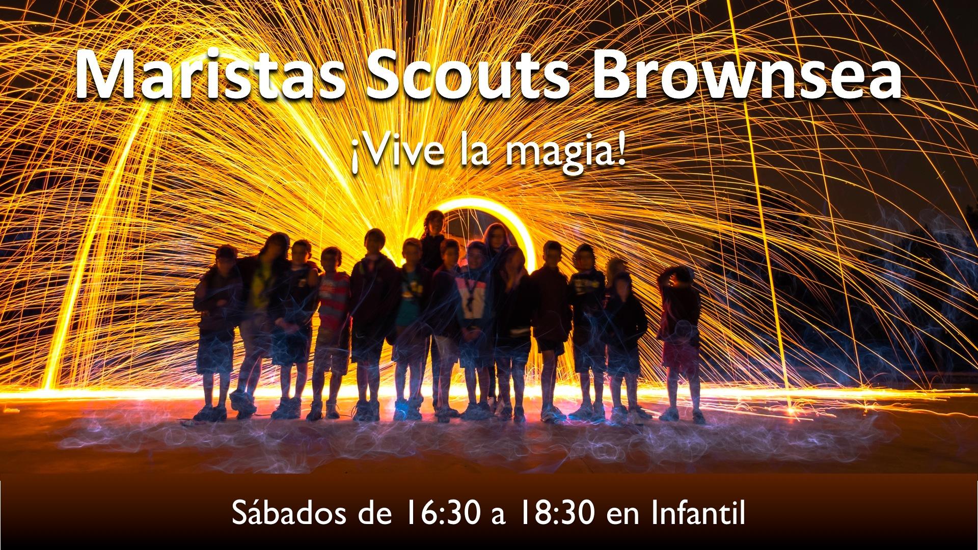 cartelScouts7wb